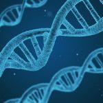 https://pixabay.com/de/dna-string-biologie-3d-1811955/