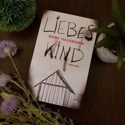Romy Hausmann - Liebes Kind - Dtv Verlag