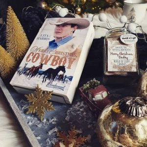 Buchbild zu Merry Christmas, Cowboy von Lita Harris ©Katja Koesterke